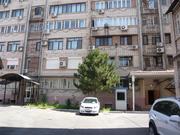 Гламур,  Нукусская,  Габус 130 м.кв.,  4 комнаты  800